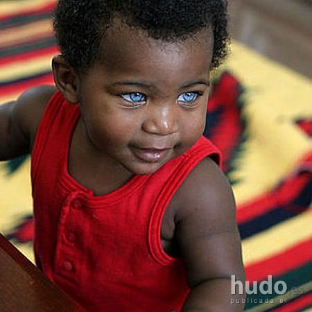 chamaquito negro ojos azules image_1